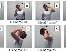 Neck Pain Exercise Options
