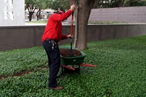 spring gardening chiropractic care